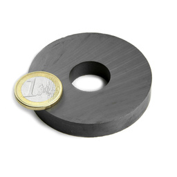 High Performance Ferrite Magnetic Ring C5