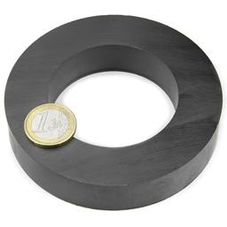 Ring Sintered Strong Ferrite Magnet